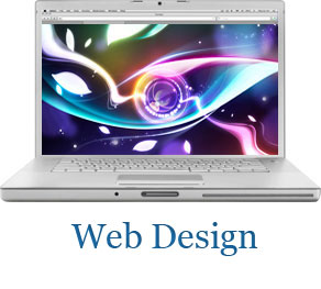 Professional Web design for businesses and organizations to promote their brand online